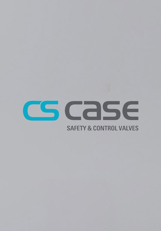 cs case catalog
